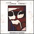swans_t